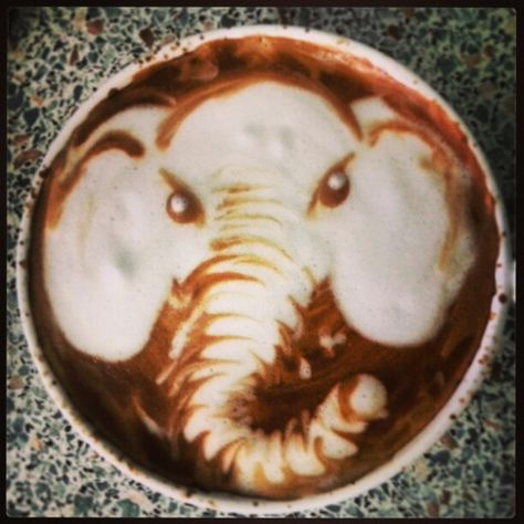 coffee-elephant